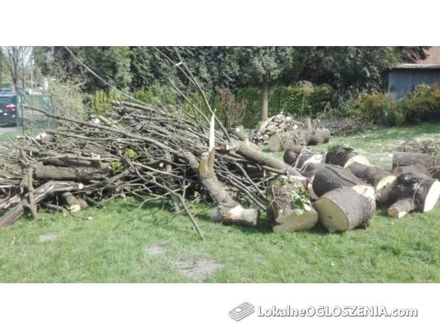 Usługi ogrodnicze, wycinka drzew, rębakowanie, wertykulacja