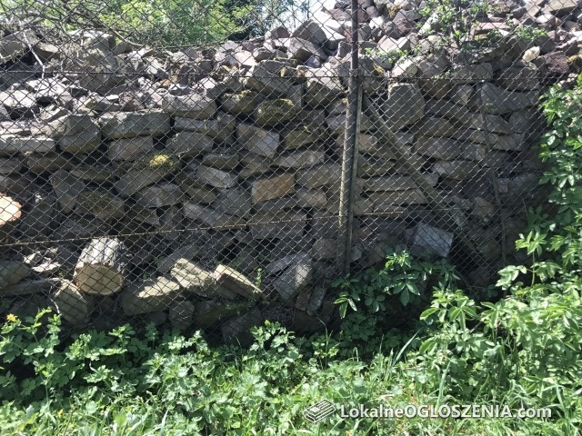 Kamien Oddam - Darmo