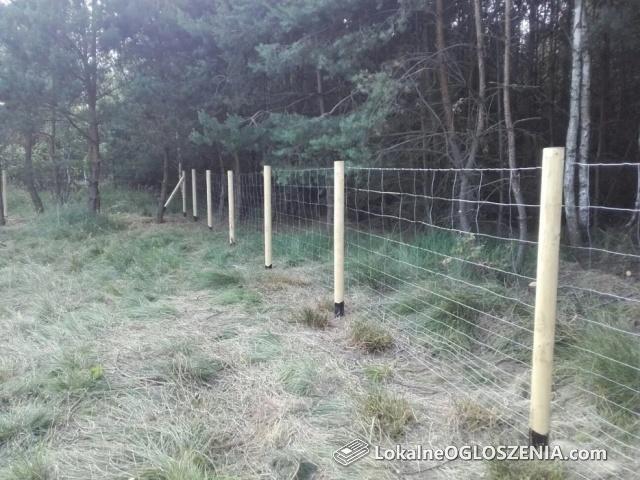 Ogrodzenia tymczasowe, budowlane, siatka leśna - od 15 zł/m z montażem