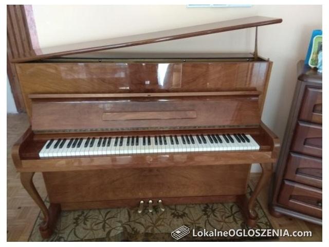 Pianino Hoffman Wiena - kolor Orzech