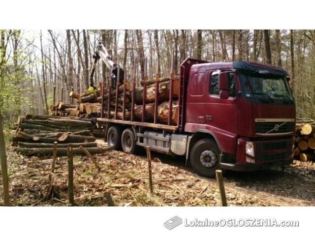 Usługi Leśne, Budowlane, Rozbiórkowe, Transportowe, Sprzedaż Drewna