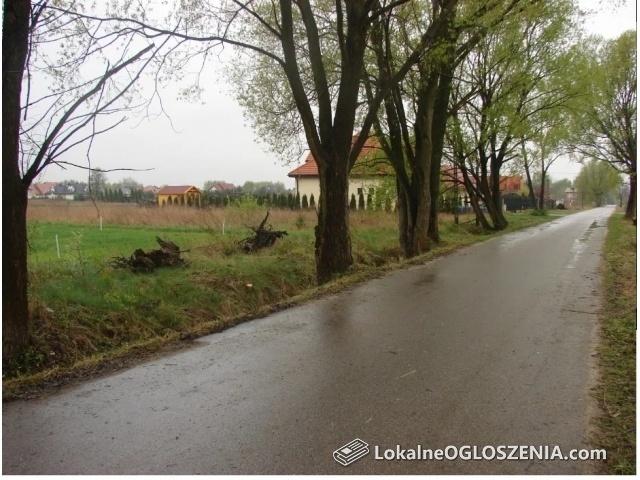 Działka budowlana 1500 m2 Robercin koło Piaseczna