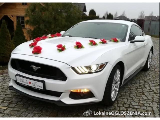 Ford Mustang biały na Twój ślub! Prowadzi Młoda Para!